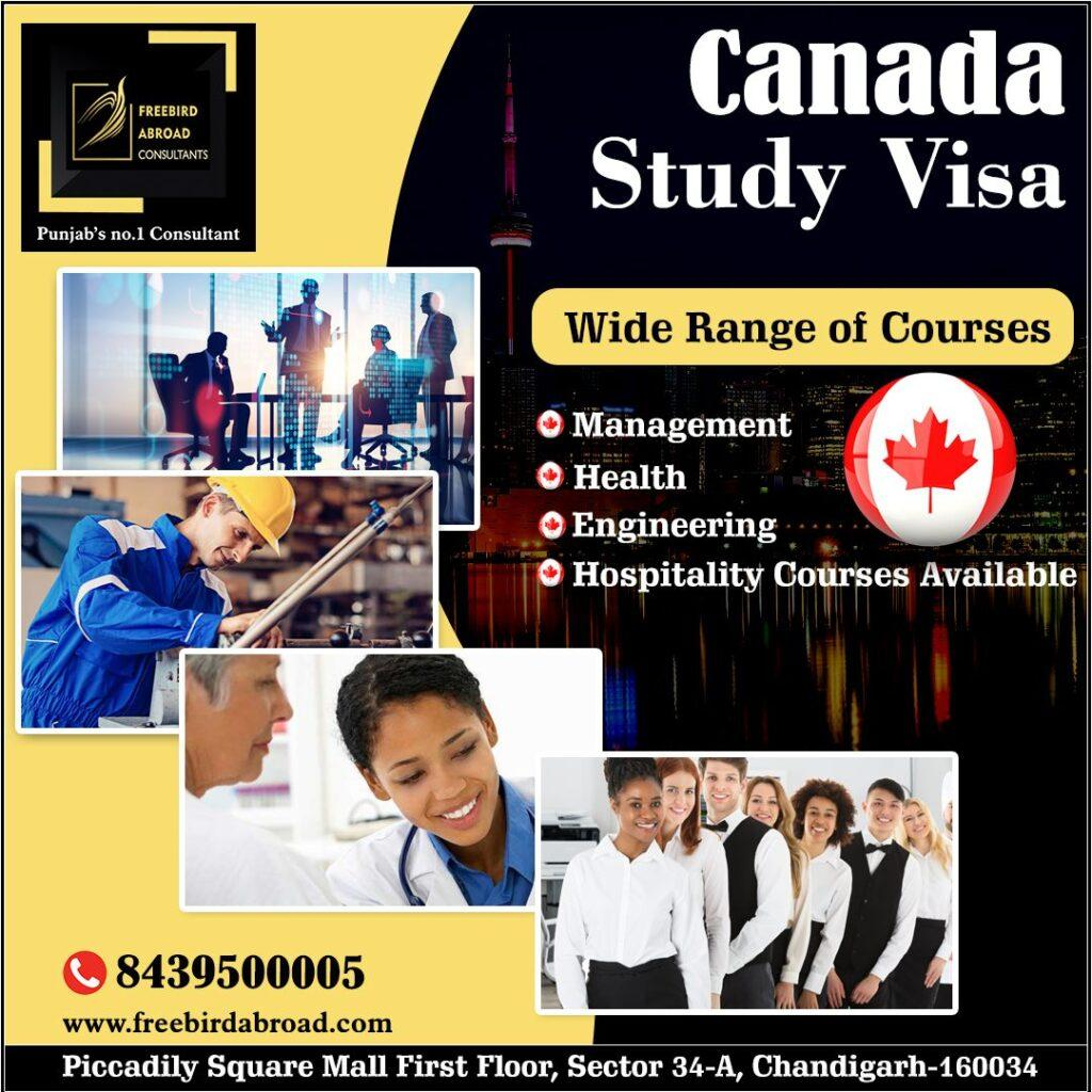 Canada Study Visa With Overall 6 Bands in IELTS.